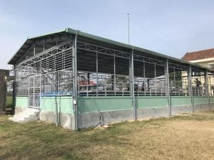 Hàng trăm học sinh tại Bình Định có cơ hội học bơi miễn phí